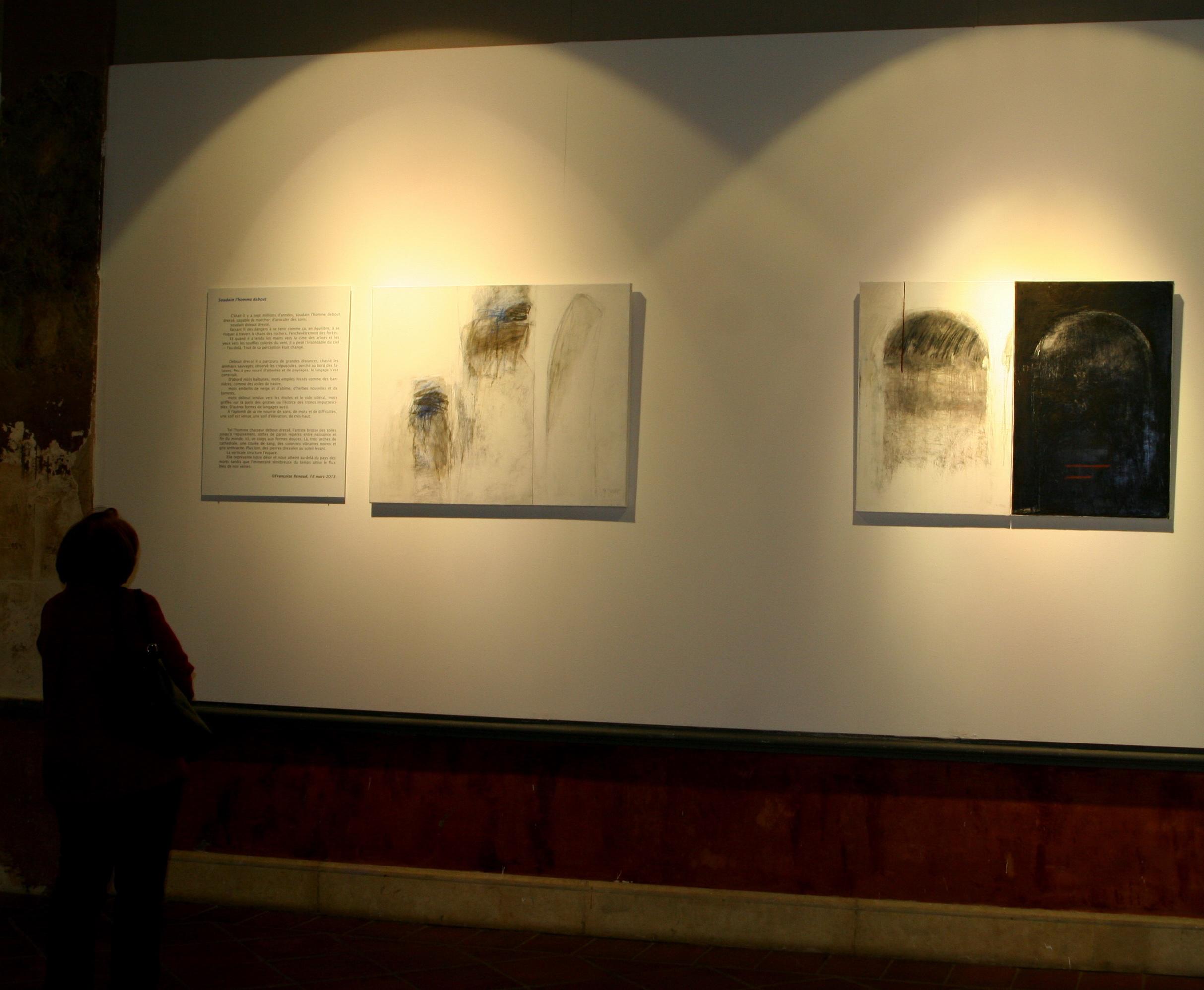 exposition Verticales éprouvées, mai à juillet 2013